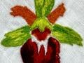 Osjeliko mačje uho - Anica Jesih - kravata_06