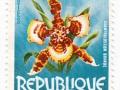 Togo - Odontoglossum grande