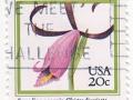 ZDA - Cleistesiopsis divaricata