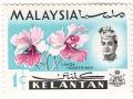 Malezija - Vanda hookeriana