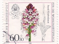 Nemčija - Orchis ustulata