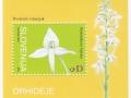 Slovenija - Platanthera bifolia