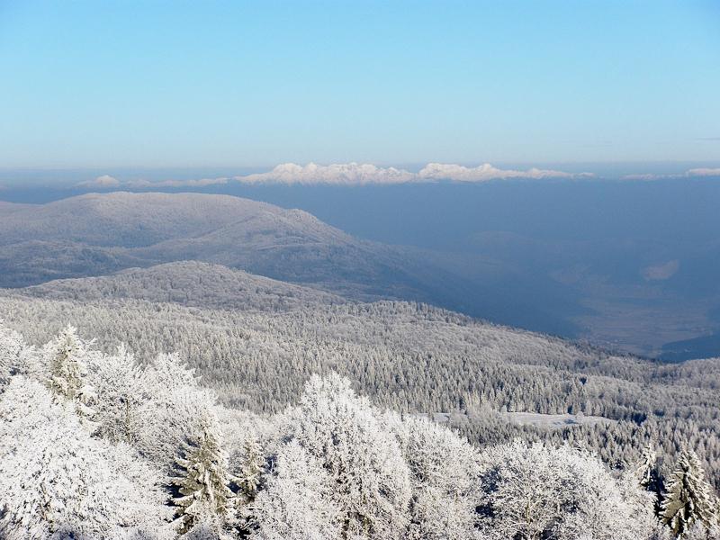 Pogled iz smučišča Gače proti Julijskim Alpam.