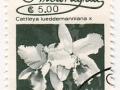 Nikaragva - Cattleya lueddemanniana